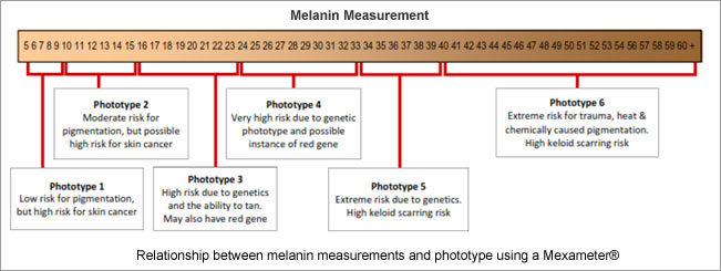 Melanin Measurement - Pastiche Training