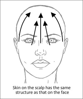 Skin on the scalp arrows - Pastiche Training